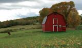 Miller Pond Road Red Barn