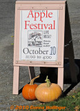 Sandwich Board for AppleFest