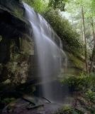 Waterfalls And Wildflowers Of The Carolinas