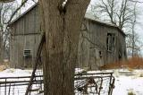 The K's old barn.....