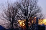 Sunrise reflections.....
