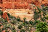Red Rock, Sedona area...