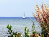 Sailing at Port Credit....
