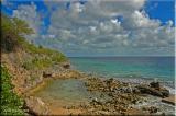 shoreline and coral