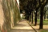 Walls of Siena