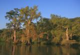 Lake Fausse Pointe
