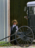 Amish boy and buggy52001.jpg