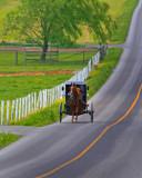 Oncoming buggy52001.jpg
