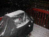 First snow -- just a touch on Sunday, 11/9/08