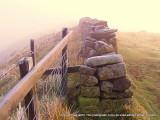 Modern farm wall on line of Hadrian's Wall.