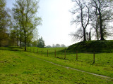 Kingsland motte and dry moat.
