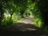 St. Peter's  Way, near  Bicknacre