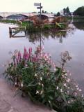 Localised  flooding