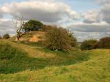 Cainhoe  Castle / 2