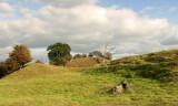 Cainhoe  Castle / 3