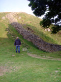 Hadrian's  Wall, at Sycamore  Gap,looking  west.