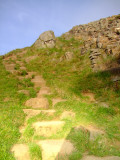 World Heritage Trail  footpath, neatly   ascends  the  hill  from  Sycamore  Gap.