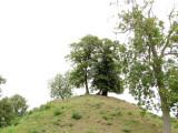 Middleton  Castle