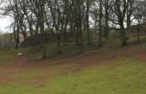 Brockhurst  Castle / 1