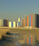 Barking Creek,with the tide out.