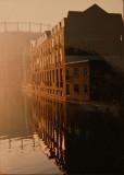 Misty reflections.
