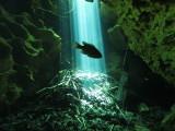 Florida Cave Diving 2008-2011