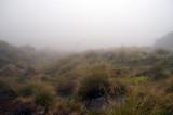 Near Mangatepopo Hut
