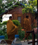 Every Morning at 8am, Monks walk by.