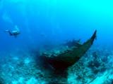 Wreak, South Red Sea