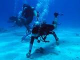 Mike training, Buoyancy control, Sharm 2005