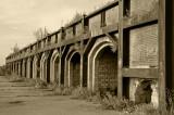 Old Brick-yard/Oude Steenbakkerij 3