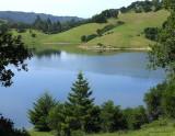 Lagunita's Lake