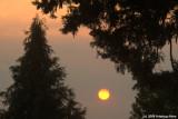 Morning smoke and sun