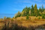 Along Fall Creek