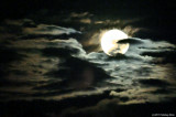 Moon In A Bed Of Clouds