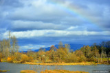 Rainbow Over Delta Ponds