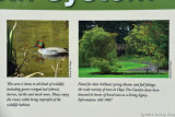 Two of my photos that are on signs in the park