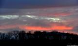 Rich Morning Sky