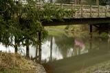 Bridge to Amphitheatre