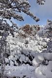 09-02 Snow 02.JPG