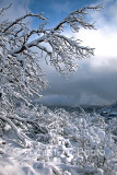 09-02 Snow 07.JPG