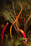 Dale Chihuly (2009) Phoenix Desert Botanical Garden