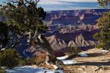 06-01 Grand Canyon 03.jpg