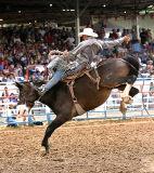 06-07 Rodeo 04.jpg