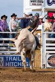 06-07 Rodeo 25.jpg