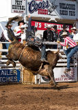 06-07 Rodeo 27.jpg