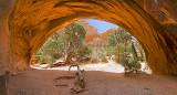 08-04 Navajo Arch 15.JPG