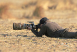 Me shooting Ringed Plover