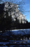 Scenes of Yosemite