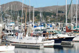 Bodega Bay  & The Sonoma Coast